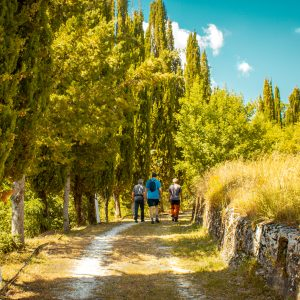 Sentero Cascia-Ocosce-Roccaporena. Verifica Sentiero 10 luglio 2020